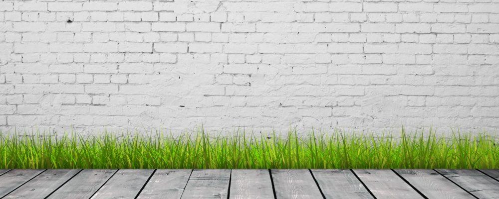 cropped-grassy-wall.jpg