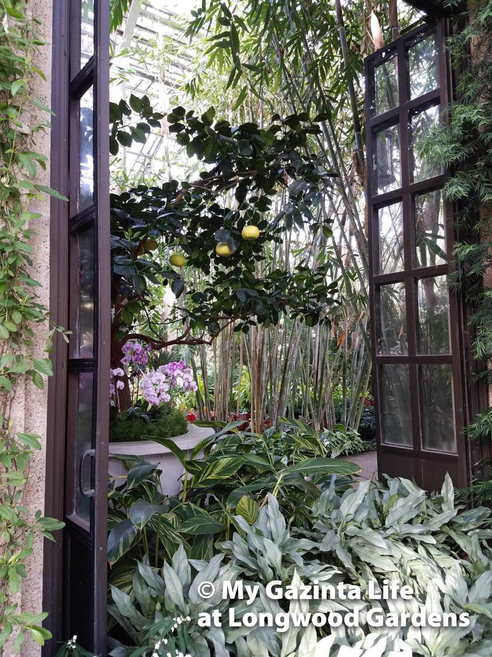 longwood-gardens-27
