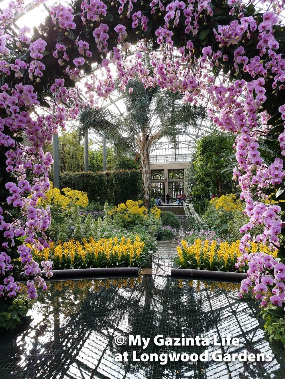 longwood-gardens-3