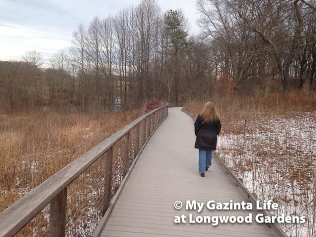longwood-gardens-56